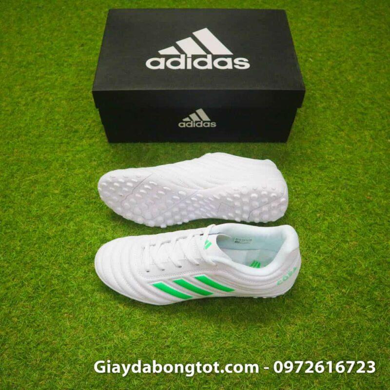 Giay da banh sieu nhe Adidas Copa 19.4 TF trang vach xanh (2)
